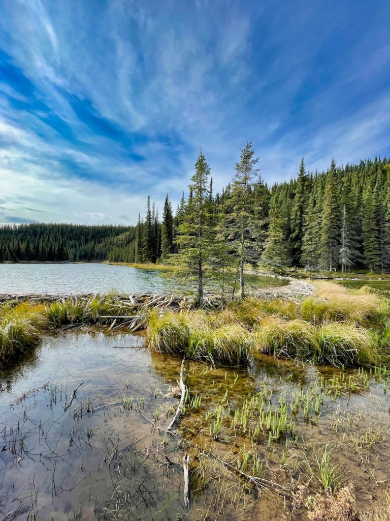 Denali National Park Itinerary - Hiking Horseshoe Lake Trail