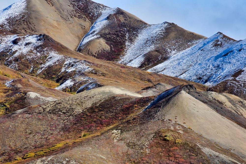 Denali National Park Itinerary - Hiking Denali Backcountry