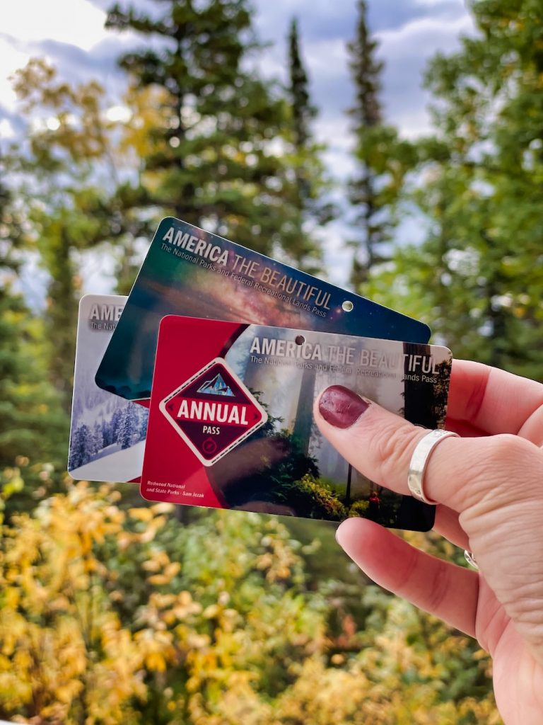 Denali National Park Itinerary - Visiting the Park - Park Pass