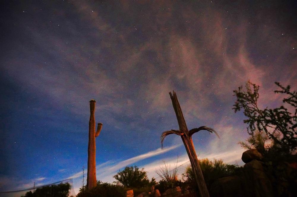 Saguaro National Park Itinerary - Stargazing