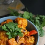 spicy coconut and sweet potato curry