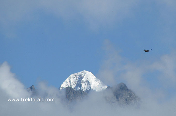 Gauri Peak as seen from Auli