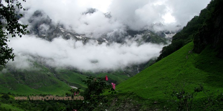 Valley of flowers piture gallery and wallpaper: Clouds, peaks and wild rose.