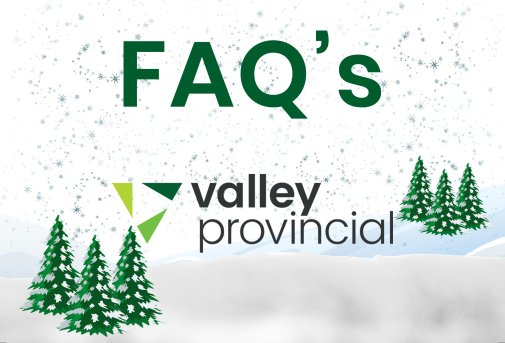 Valley Provincial, Christmas tree hire, office Christmas tree, London corporate landscaping, London commercial landscaping, corporate Christmas tree, office grounds management, corporate planting, hotel landscaping