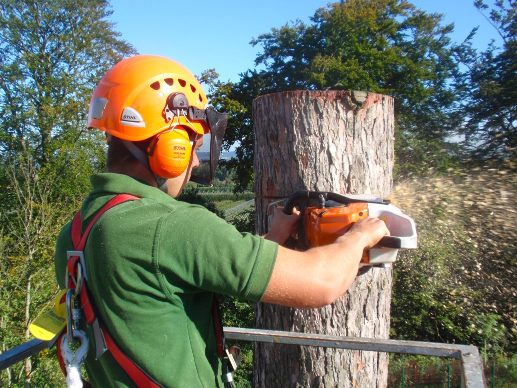 Valley Provincial, weed control, emergency landscaping, tree surgeons, emergency corporate landscaping, remedial works, grounds management, grounds maintenance, tree management, trees management