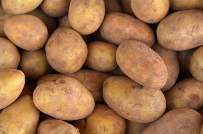Russet Potato Products & Other Potato Varieties Ventura County