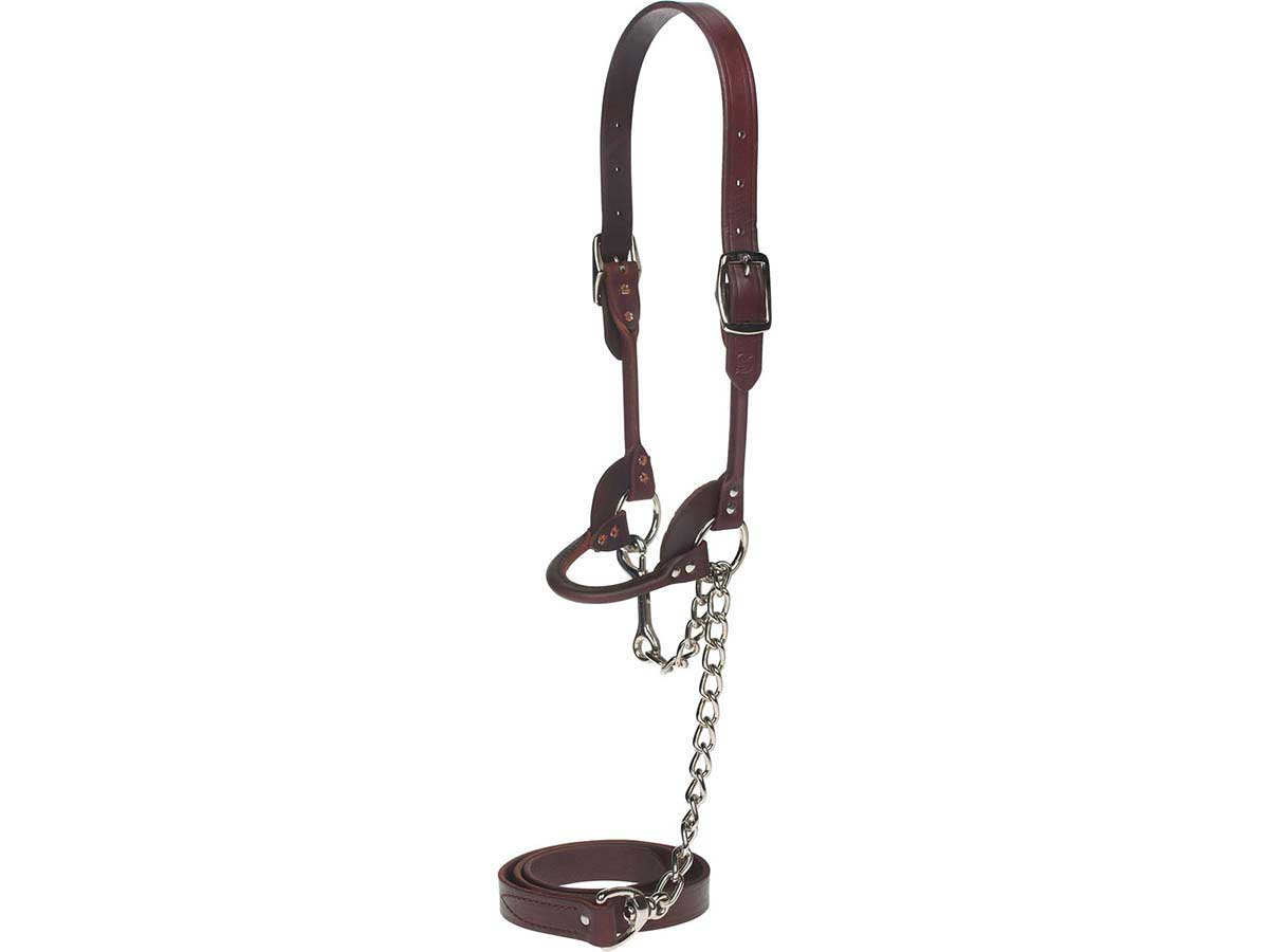 Round Leather Halter Sullivan Supply