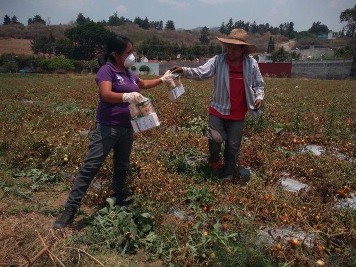 Acción colectiva para enfrentar los retos del planeta, Unilever