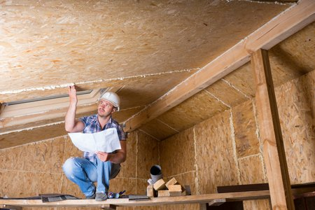 Why Does Mold Grow In My Attic? & Top 4 Reasons Mold Grows In Your Attic!   Washington DC   Valor Mold