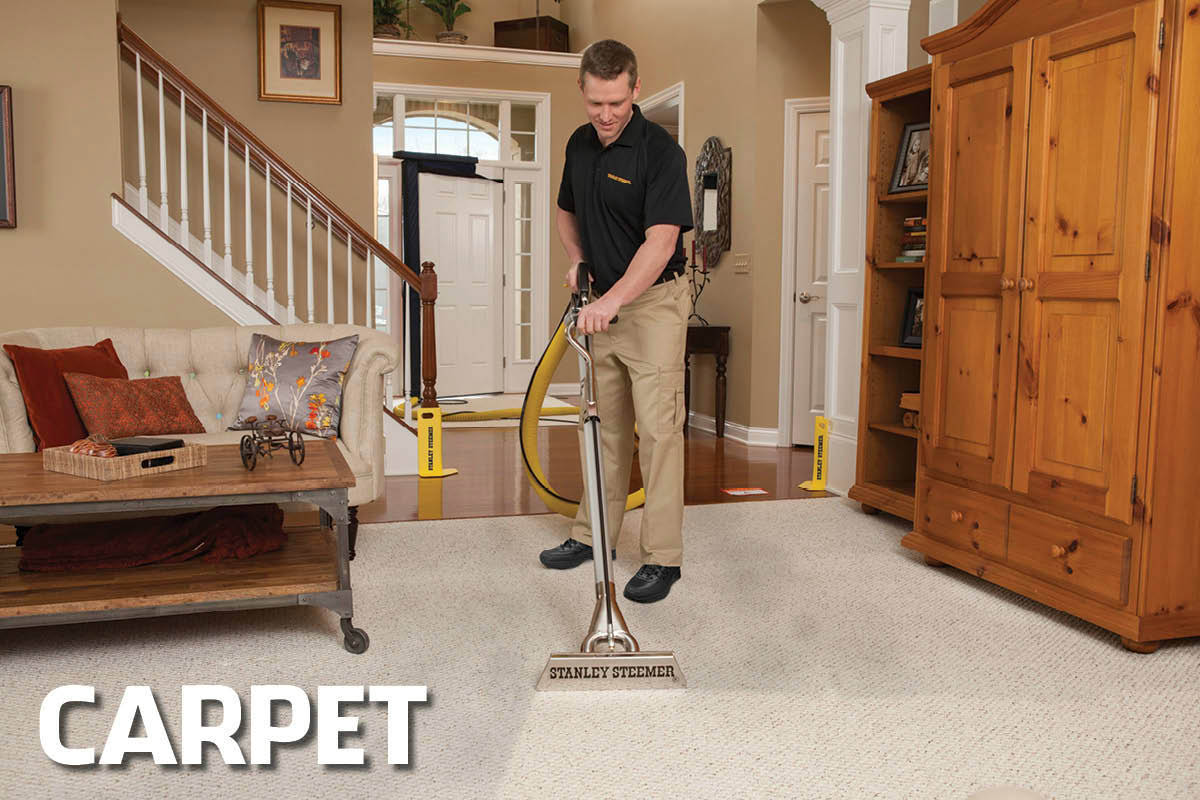 stanley steemer carpet cleaner vidalondon