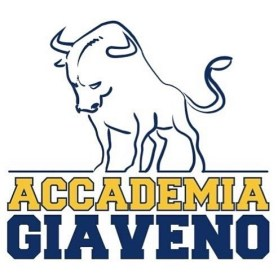 Logo Società Accademia Giaveno Judo