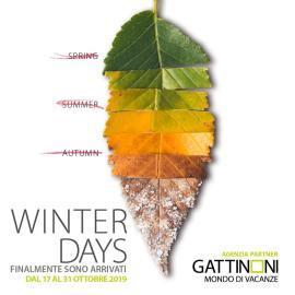Alternative Lontane - Winter Days