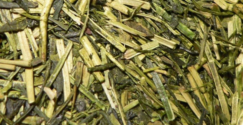 Health Benefits Of Kukicha Twig Tea Value Food