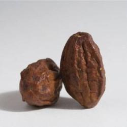 haritaki dried fruits