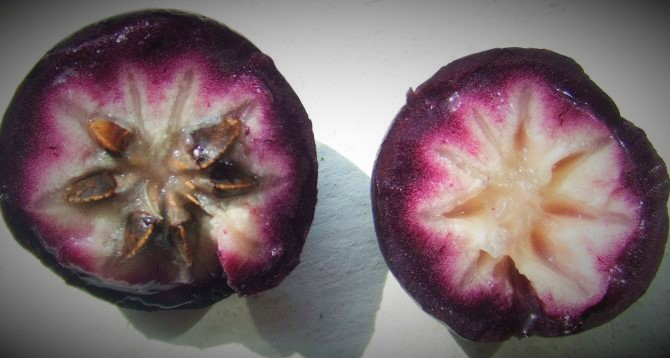 Health benefits of Star Apple