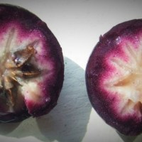 Health benefits of Star Apple