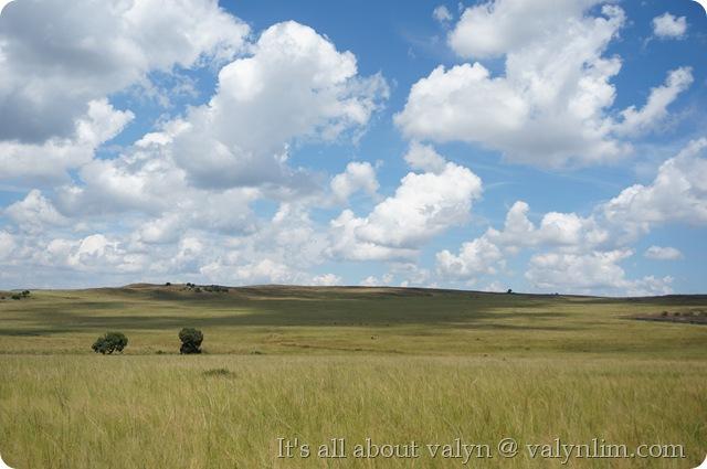 南非旅行 (1)