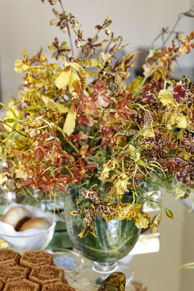 orquideas amarelas e vinho milplantas