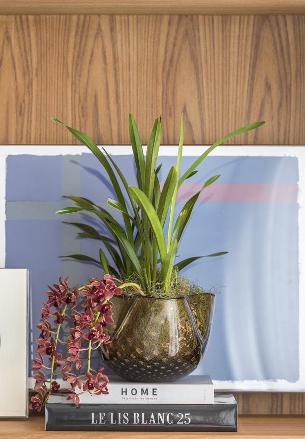 vaso trevo fumê com orquídeas pendentes