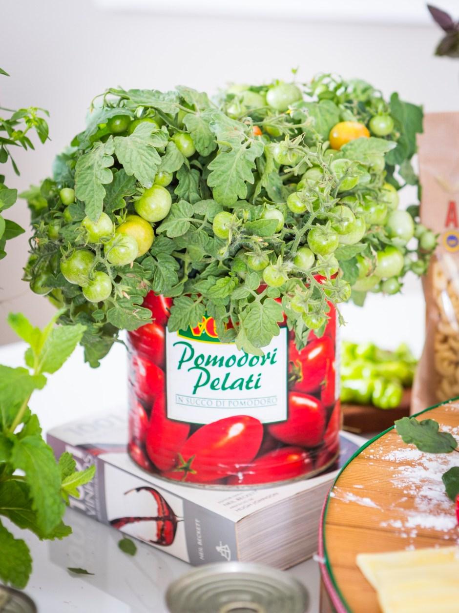 decoração com lata de molho de tomate