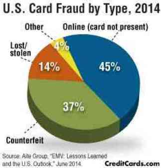 fraud-type-infographic