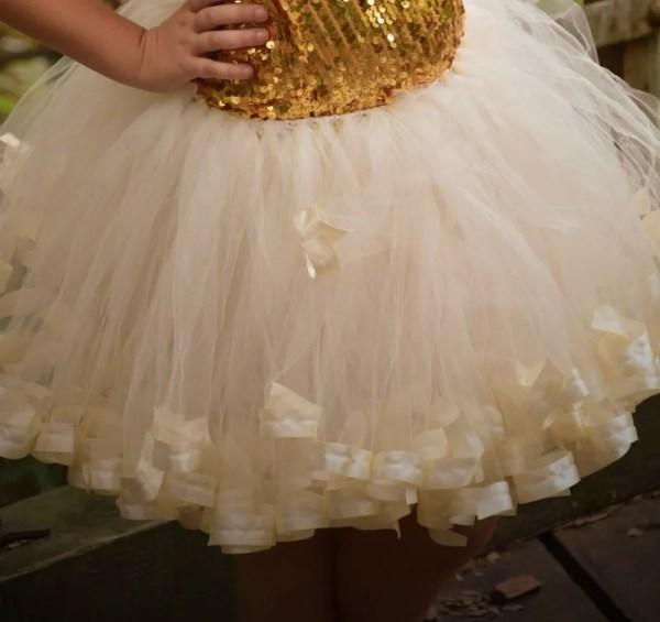 champagne tulle skirt