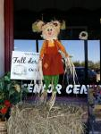 Senior Center Scarecrow - Downtown Van Alstyne,TX