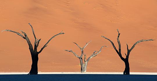 Rondreis Namibie Sossusvlei