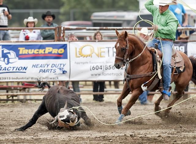 Chilliwack Rodeo - Sunday