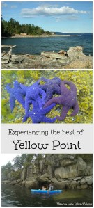 If Kayaking is on the agenda while visiting Vancouver Island, make sure Yellow Point is one of your destinations