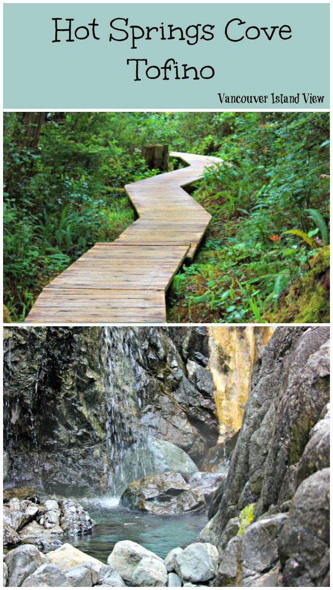 Hot Springs Cove is a tour destination you should not miss while in Tofino on Vancouver Island