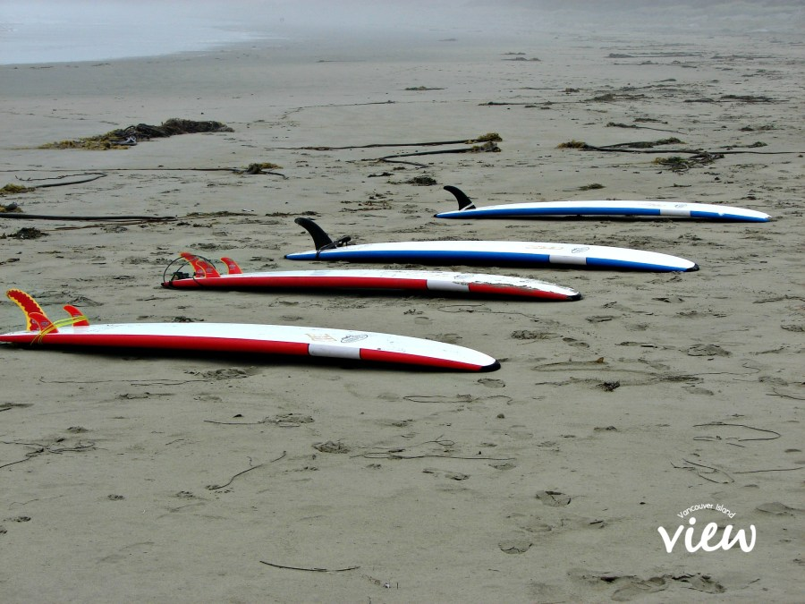 Planning a trip to Tofino on Vancouver Island? Here is a review of the top resorts in the area.