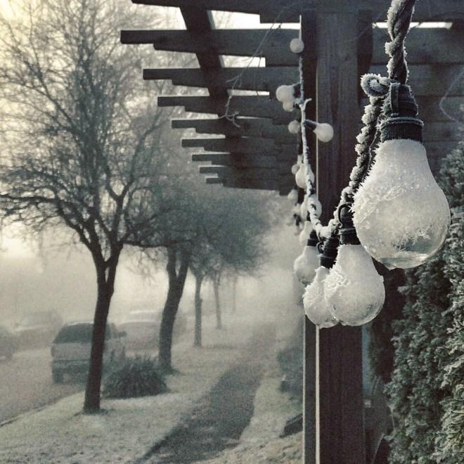 fog and frozen bulbs