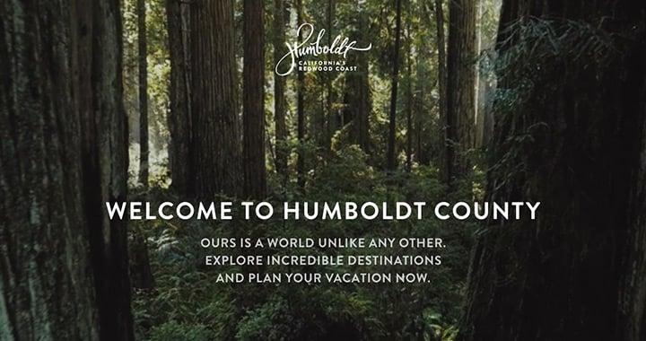 20 Beautiful Nature Inspired Websites