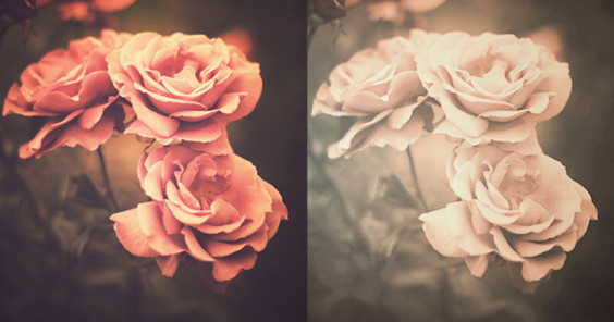 45 Amazing and Free Photoshop Actions