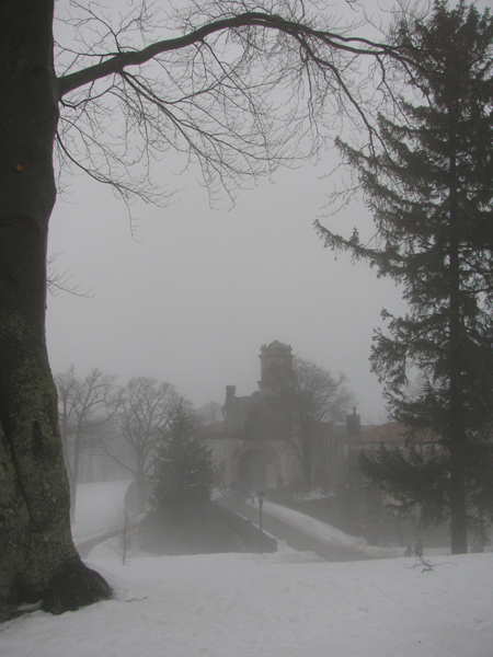 Foggy Day at the Mansion