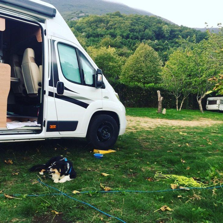 Kotor Montenegro Hund Camping Wohnmobil Kamp Todorovic