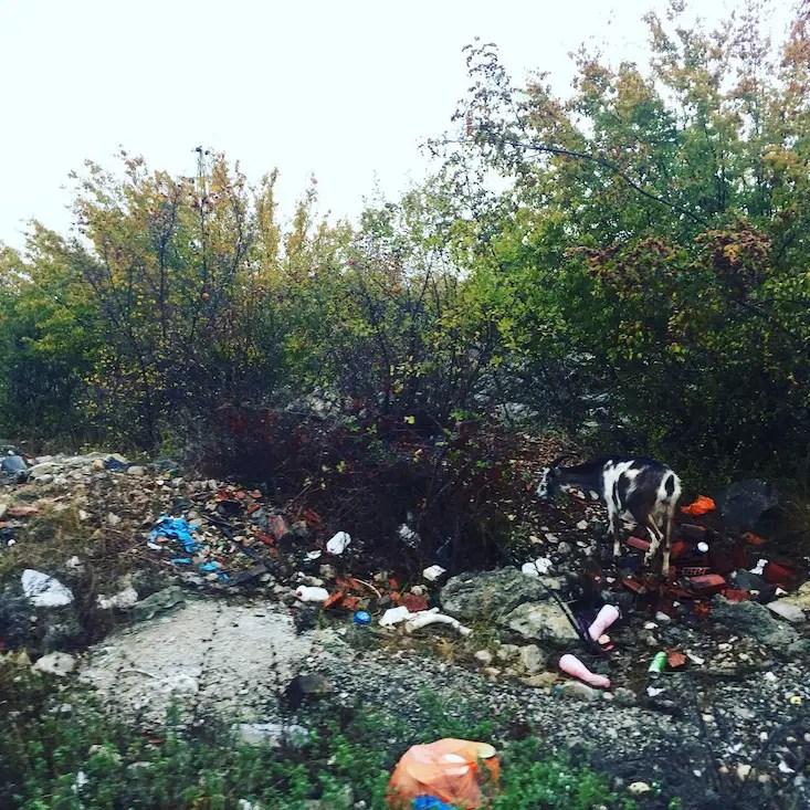 Montenegro Umweltschutz Plastikmüll Kontraste