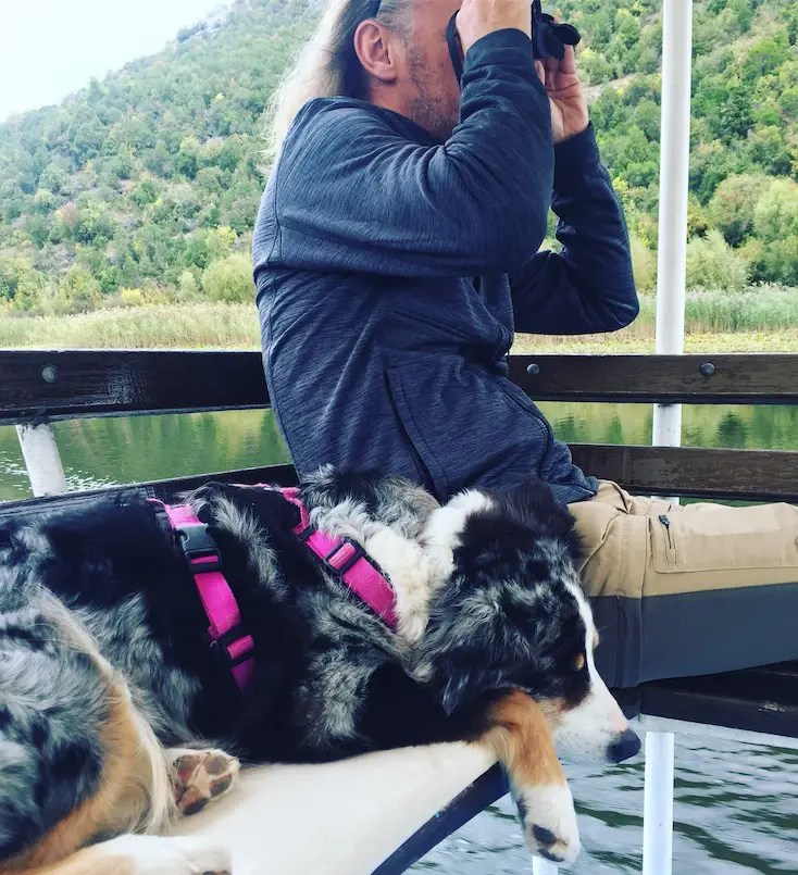 Bootstour Skutarisee Hund