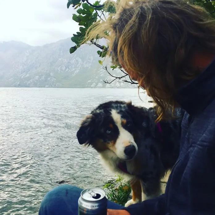 Hund Montenegro Kotor Camping