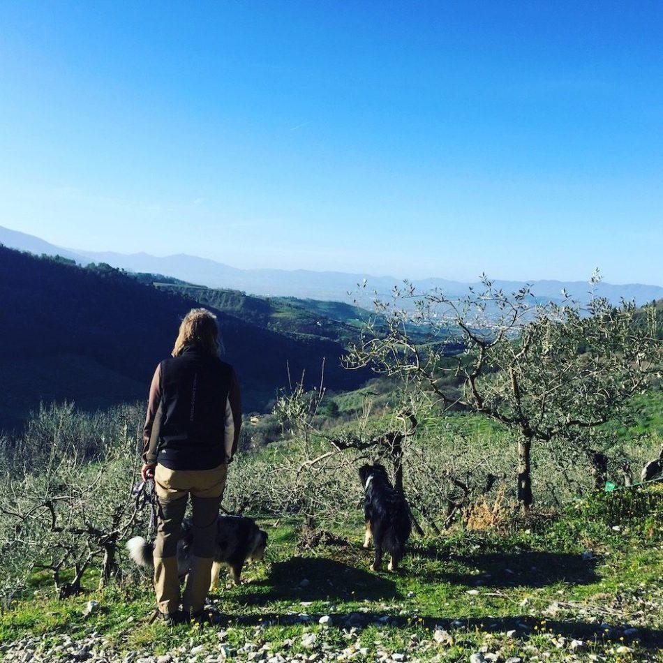 Umbrien Wanderung Hund