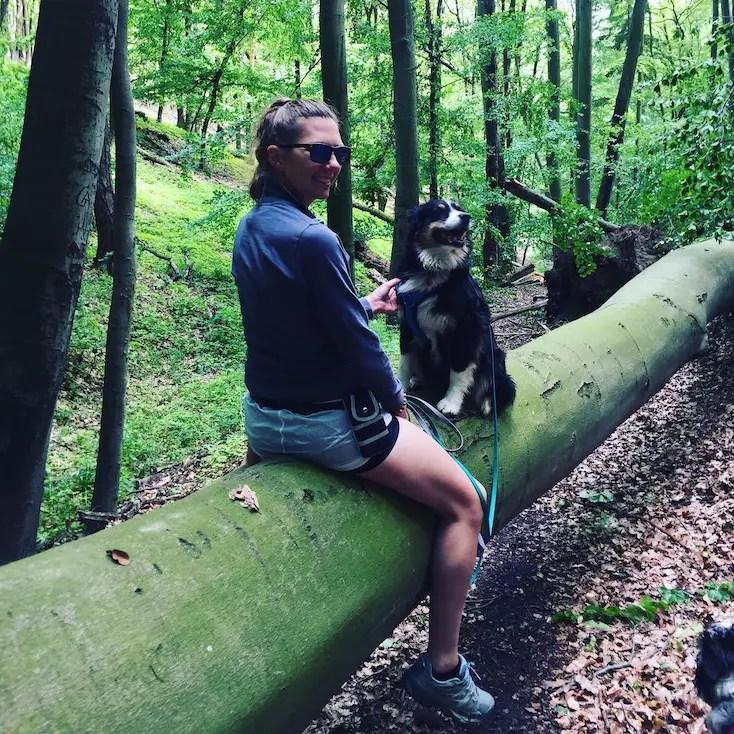 Kooperation hund hundeblog camping reisen reiseblog wandern