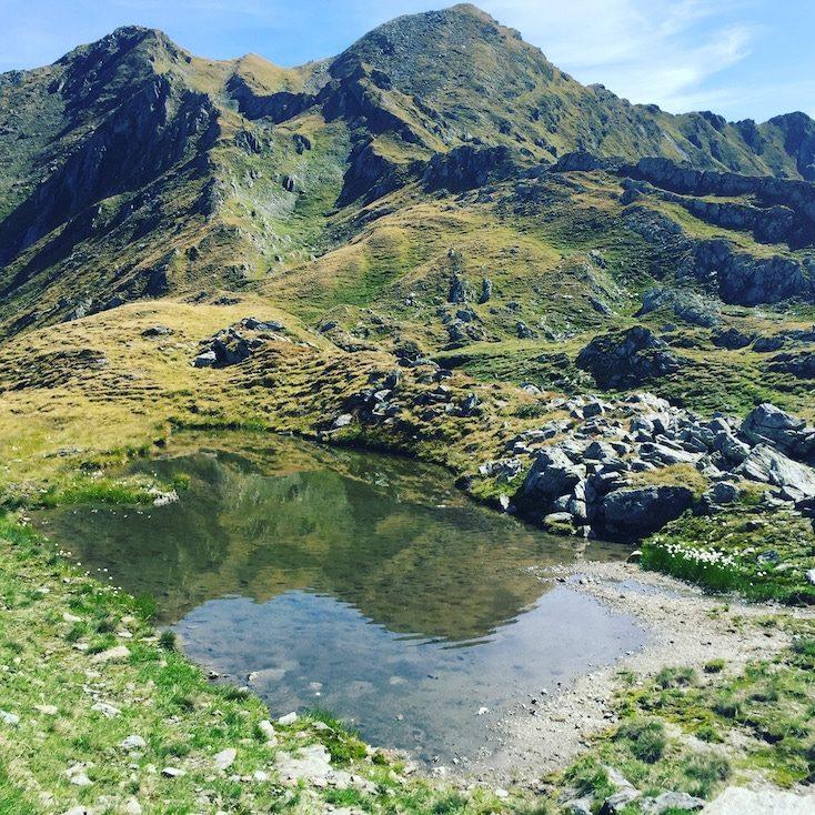Pallspitze Blaue Lacke Kitzbüheler Alpen Brixental Langer Grund Wanderung mit Hund Tour Sommer