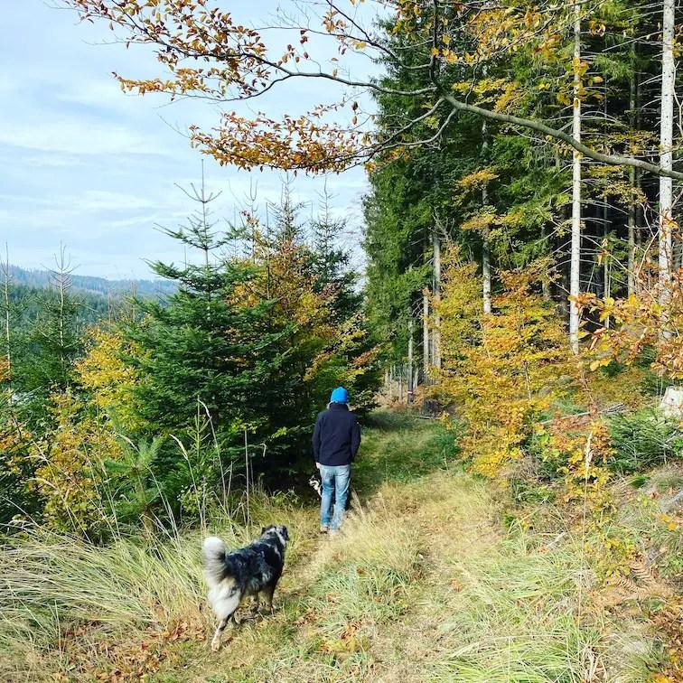Soboth Wandern mit Hund Steiermark