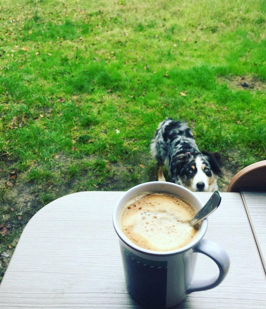 Abenteuer Alleine Verreisen Solo.Travel Reisen mit Hund Camping Roadtrip