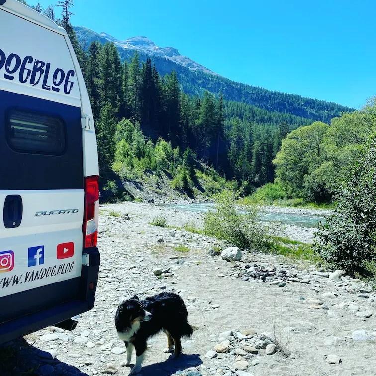 Optimismus in Corona Zeiten Camping mit Hund Frankreich Alpen Australian Shepherd Wildcamping Roadtrip Reisefreiheit
