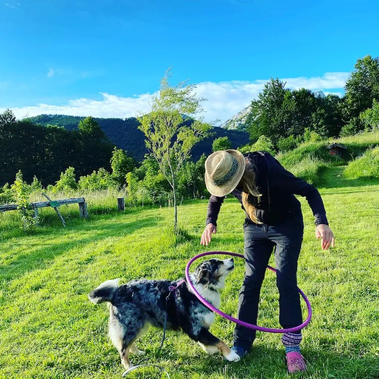 Optimismus_Corona Kamp Velebit Camping mit Hund Kroatien Roadtrip Australian Shepherd Campingplatz