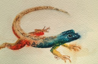 Flat Lizard (watercolour 6 x 4 inch)