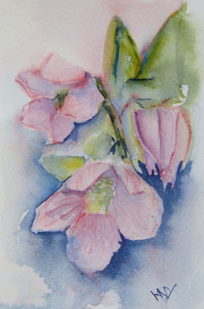 Christmas Flower (watercolour 4 x 6 inches). Artist: Vandy Massey