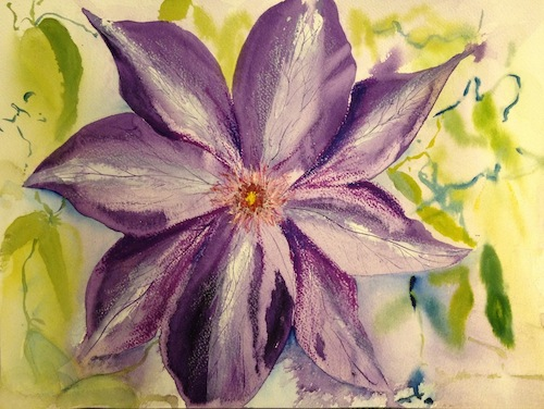 The original clematis watercolour wash